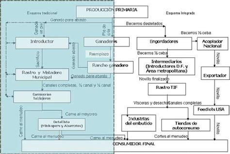 cadenas productivas de mexico diagn 243 stico de la cadena productiva bovinos de doble