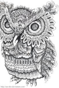 free owl coloring pages for adults i m going to start colouring again for my zen destressing