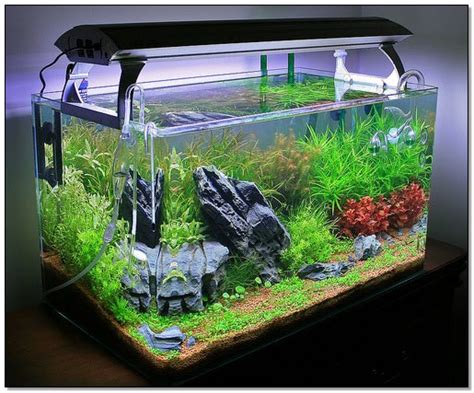 desain lu untuk aquascape inspirasi aquascape untuk desain interior rumah desain