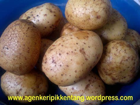 kripik kentangjual keripik keripik kentang kripik