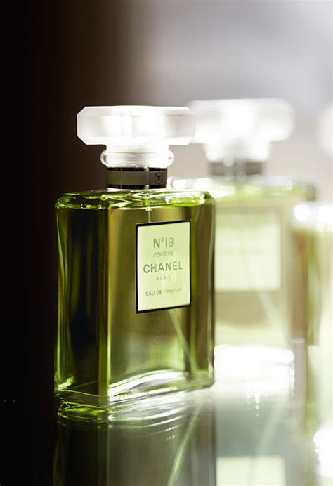 Chanel No 19 Perfume Review Bois De Jasmin | chanel no 19 poudre tom ford jasmine rouge and santal