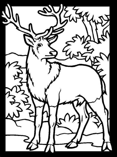 winter deer coloring page printable color deer1 animals coloring pages