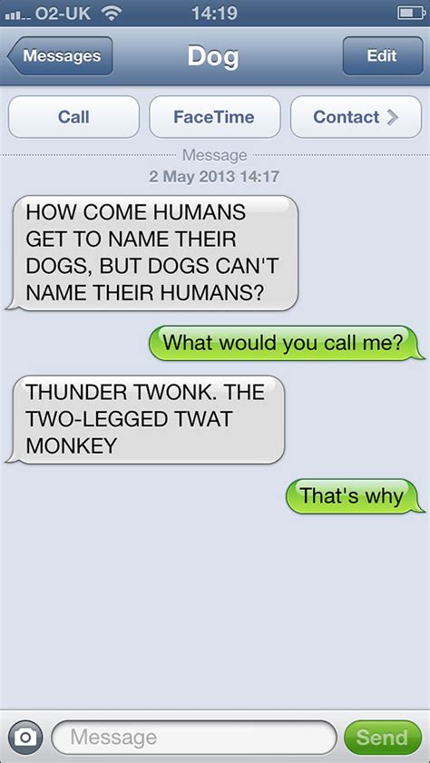Doge Meme Font - what if dogs could text 25 hilarious texts from dogs