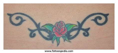 rose tattoo springsteen top tr st butterfly images for tattoos