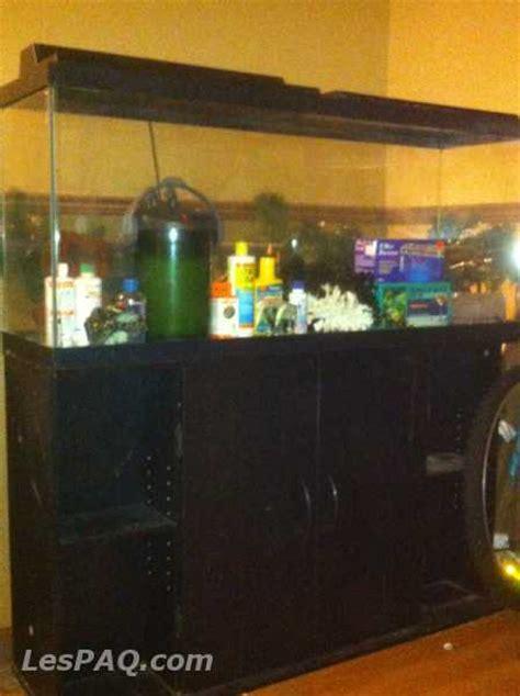 aquarium design a vendre aquarium usage a vendre 28 images aquarium vendre neuf