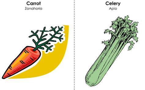 imagenes de zanahoria en ingles vocabulario b 225 sico en ingles frutas y otros alimentos