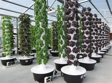 vertical growing systems diy aquaponics at home