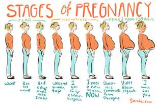 Strongest Light Beer The Real 9 Months Of Pregnancy Cherryplucker