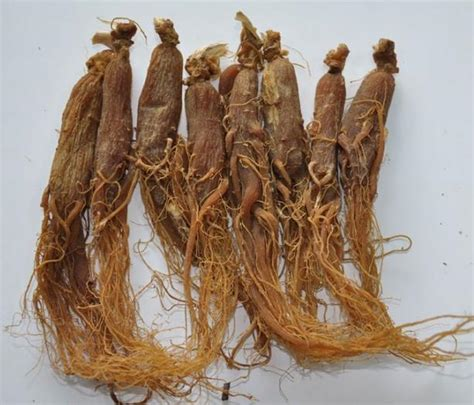 Ginseng Cina korea ginseng ginseng root slices zhong wei horticultural products company top