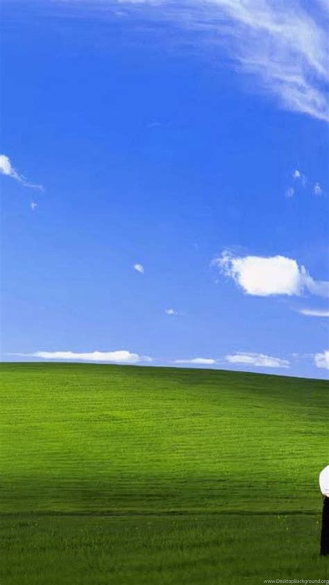 funny bliss windows xp ipad  air wallpapers desktop