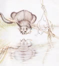 visual literacy elements possum magic kid books stuff