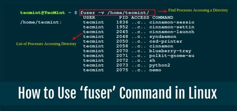 how to use spaces learn how to use fuser command with exles in linux