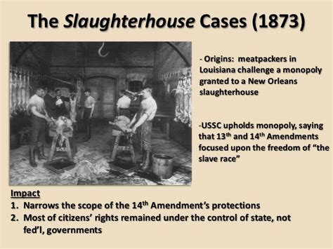 Slaughter House Cases by 2 Presentation The New South