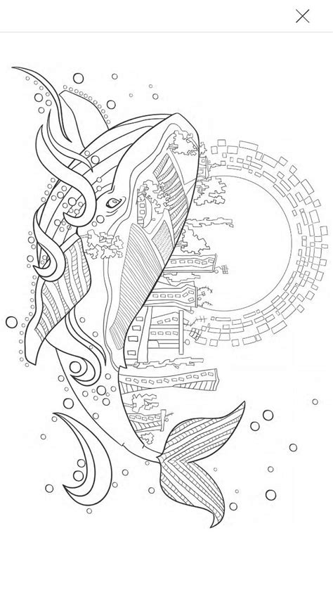 whale coloring page whale coloring pages blank coloring