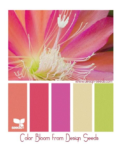 ugliest color combinations 55 best there are no ugly colors just unfortunate