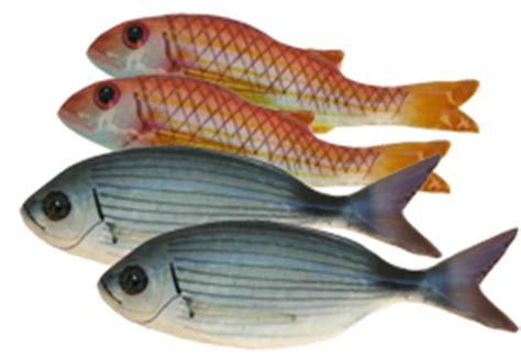 corsi di cucina ancona piatti di pesce corso di aggiornamento cucina