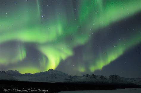 denali national park northern lights photography adding to the outdoors experience aurora