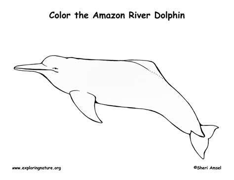 coloring page river river coloring pages coloring pages