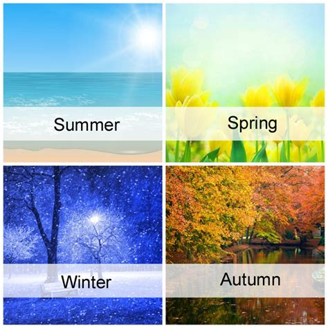 Four Seasons by 4 Seasons