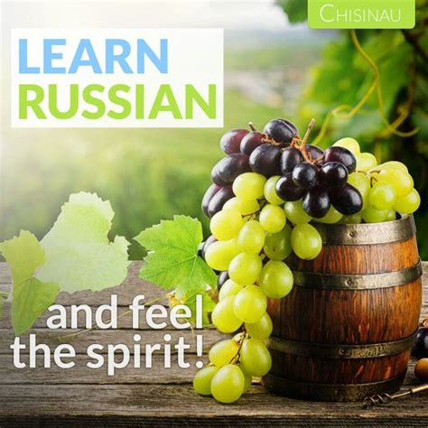 best russian language course best 20 russian language course ideas on