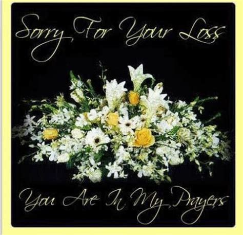 sorry for your loss sorry for your loss of a quotes quotesgram