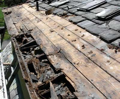 decke rot rotting roof deck torontoroofing ca