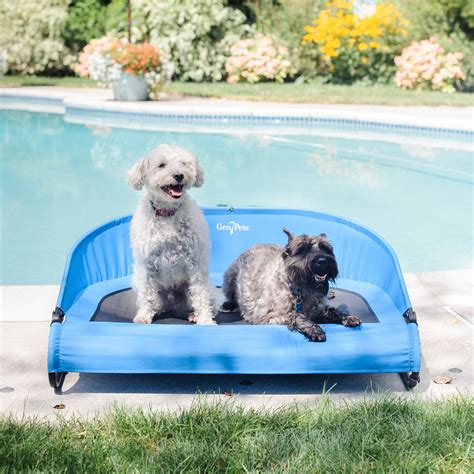 a puppy to outside cool air cot an outside bed to use anywhere beds and costumes