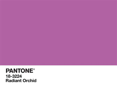 color of about us pantone digital wallpaper