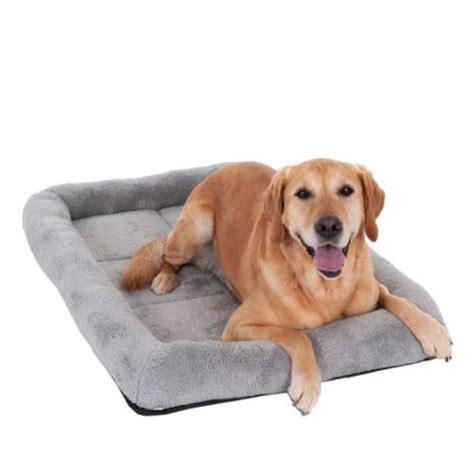cuscini cani cuscino per trasportini per cani zooplus