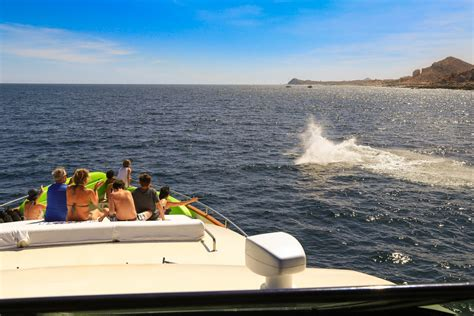 boat rental cabo san lucas cabo boat rentals cabo boat charter cabo boat for a day
