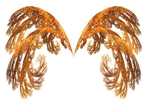 wings i beyond wings