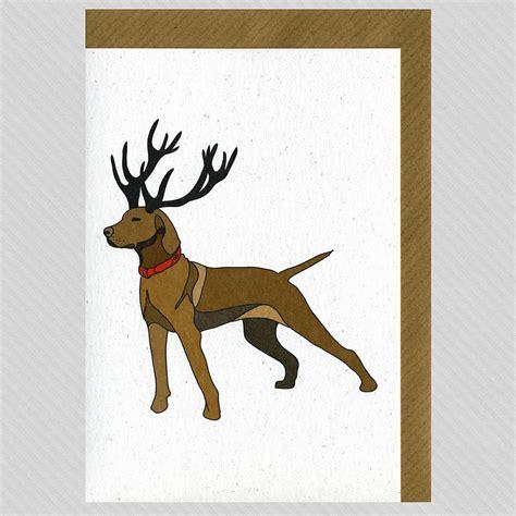 vizsla cards illustrated vizsla blank card by illustrated cards