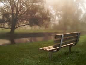 the park bench park bench guardian bette crosby