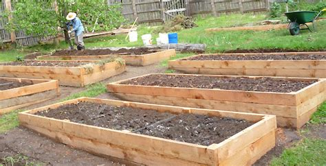 cedar raised beds eartheasy blogcedar vs recycled plastic vs composite raised garden beds eartheasy blog