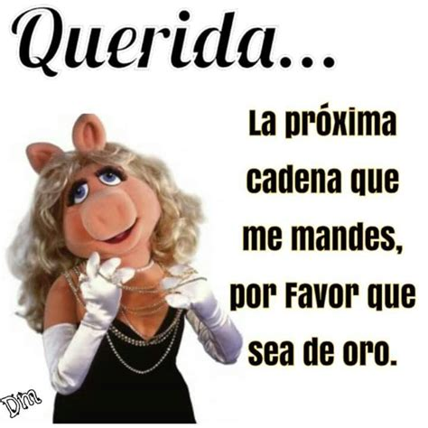 no mas cadenas memes 17 best images about peggy on pinterest the muppets