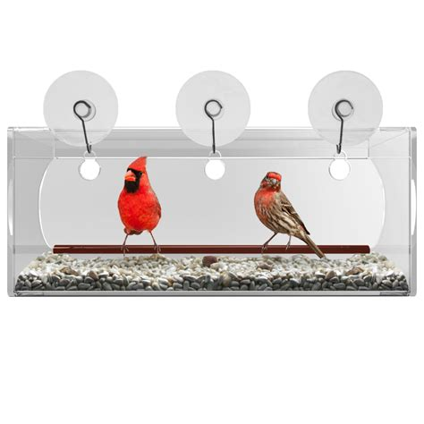 tranquil outdoors quality window bird feeders