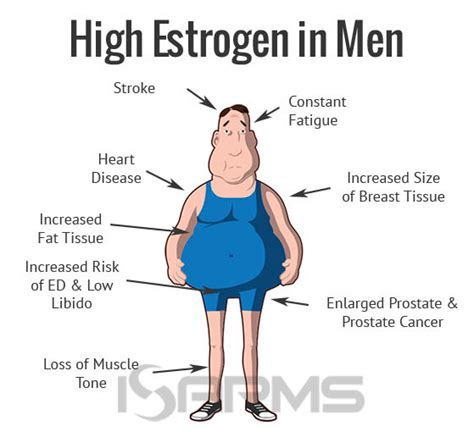 estrogen hormone effect on men forma stanzol isarms com