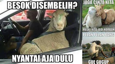 kumpulan meme lucu tentang hewan kurban  bikin ngakak