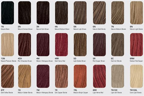 light brown hair color chart light brown hair colour chart hairstyles ideas