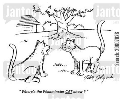 cats at westminster show cat show humor from jantoo