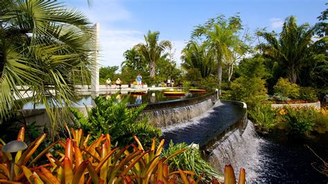 Naples Botanical Garden by Naples Botanical Garden In Naples Florida Expedia
