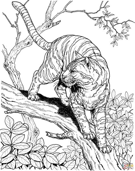 coloring page jungle tiger in a jungle coloring page free printable coloring