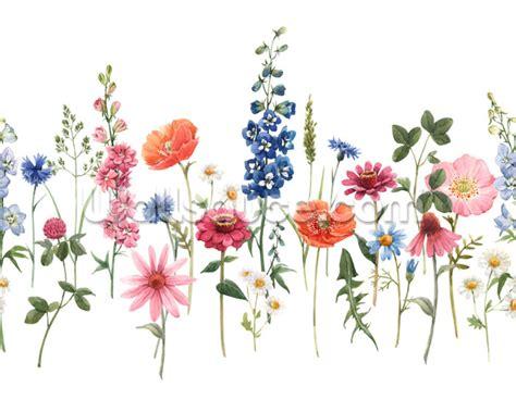 pretty meadow flowers wallpaper wallsauce