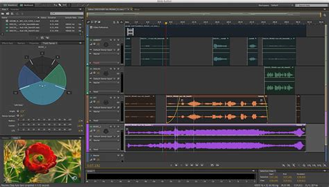 adobe video editing software free download full version for xp adobe audition download