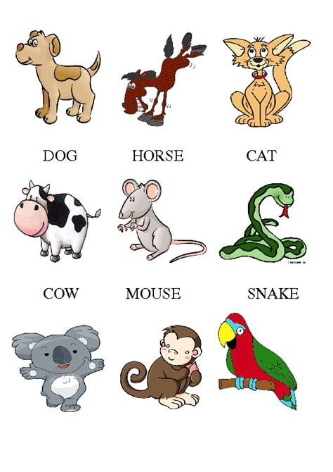 printable animal flashcards for toddlers animal flashcards