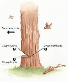 231 onnage du bois abattage d 233 bitage 233 branchage