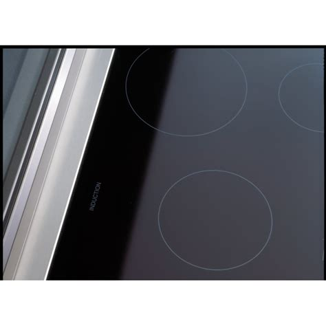 fan for induction cooktop induction cooktop with fan 28 images 10 best ideas about viking range on stove vent kitchen