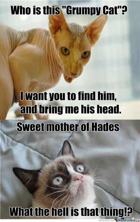 Grumpy Cat Best Meme - who is grumpy cat by oscar sanders 144 meme center