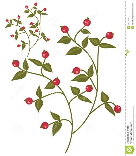 berry design berry design stock vector image 53613659