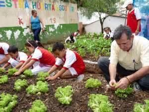 imagenes huertas escolares las huertas escolares echan ra 237 ces noticias de santander